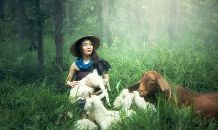 A Green And Humane Society – Be Kind To Animals And Your Body