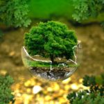 We Can Improve Our Current Ecological Crisis By Living Green