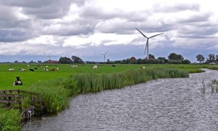 Going Green With Wind Turbines