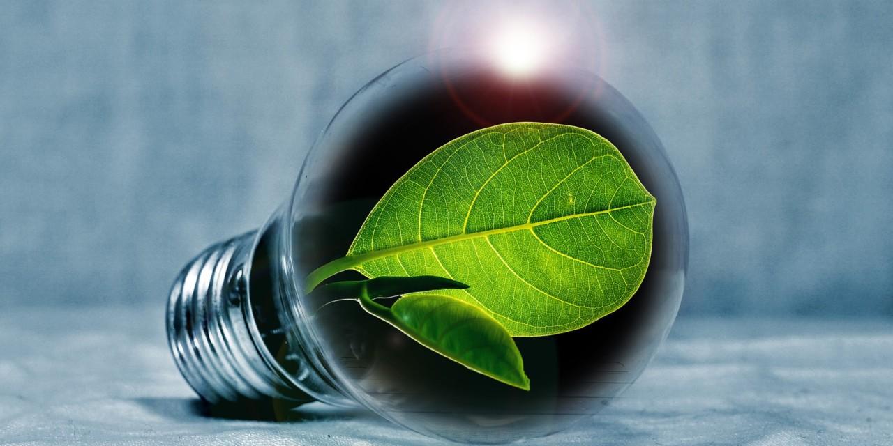Green Earth – No Longer a Dream