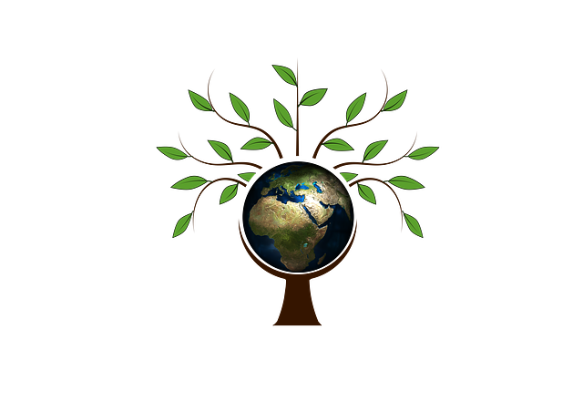 Green Living Ideas – Save Earth, Save Life