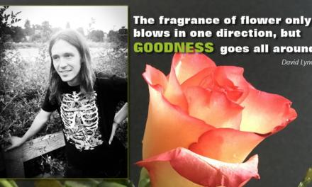 Goodness Fragrance
