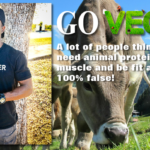 Go Vegan For Yourself, Animals, & Environment