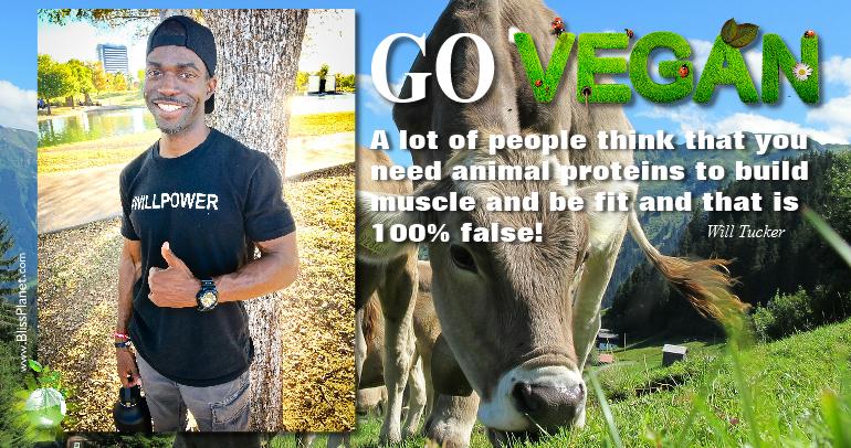 Go Vegan For Yourself, Animals, & Environment